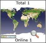 website hit counter